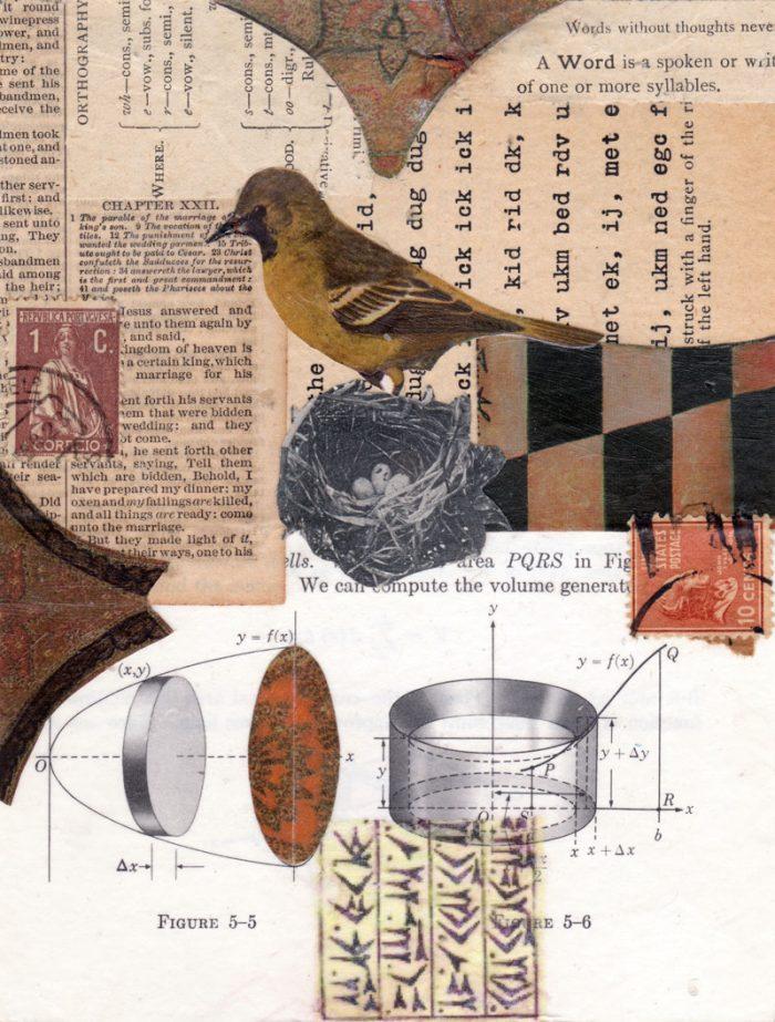 mixed media paper collage nest bird 7 x 5.25