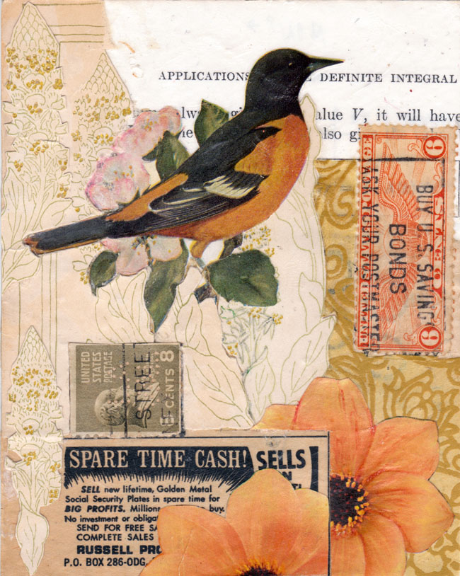 bird collage spare time cash sharmon davidson