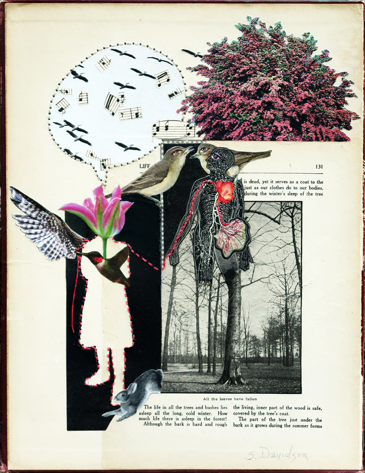 art and perfectionism when you speak to the birds collage sharmon davidson
